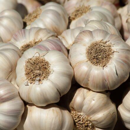 garlic, vegetable garden, garden, Pentax K10D