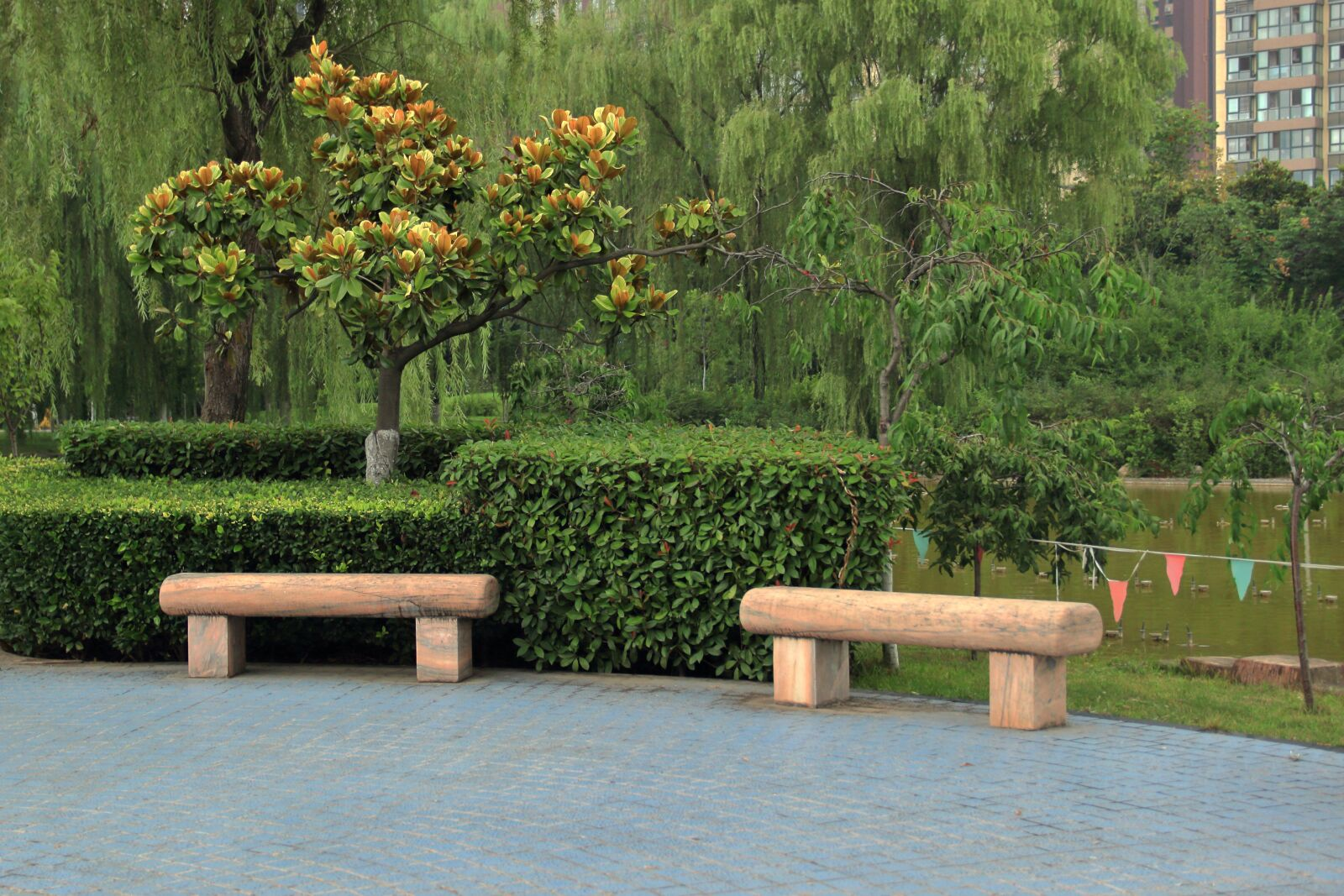 "Canon EOS 600D (Rebel EOS T3i / EOS Kiss X5) sample photo. ""Tree, nice, good look"" photography"
