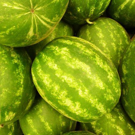 fruit, green, watermelon, Panasonic DMC-TZ18