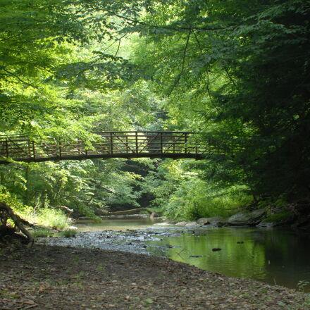 bridge, forest, reflection, stream, Nikon D200