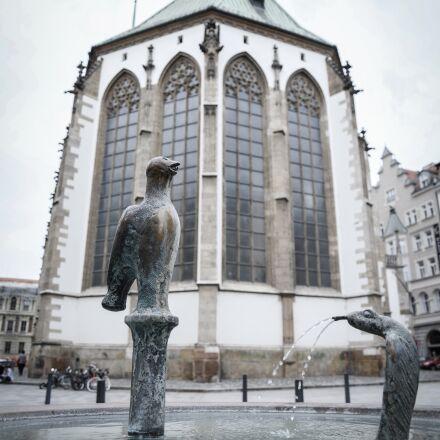 statue, bird, church, Nikon D600