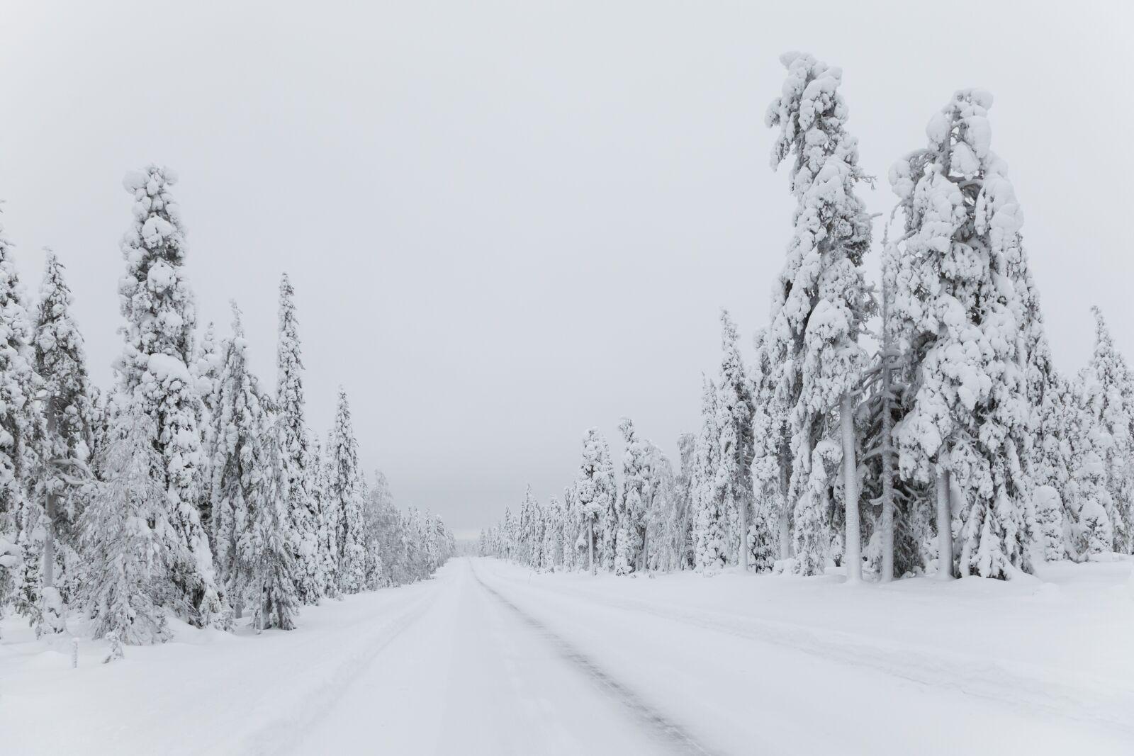 snow, winter, polar night, Canon EOS 5D MARK II, Canon EF 24-105mm f/4L IS