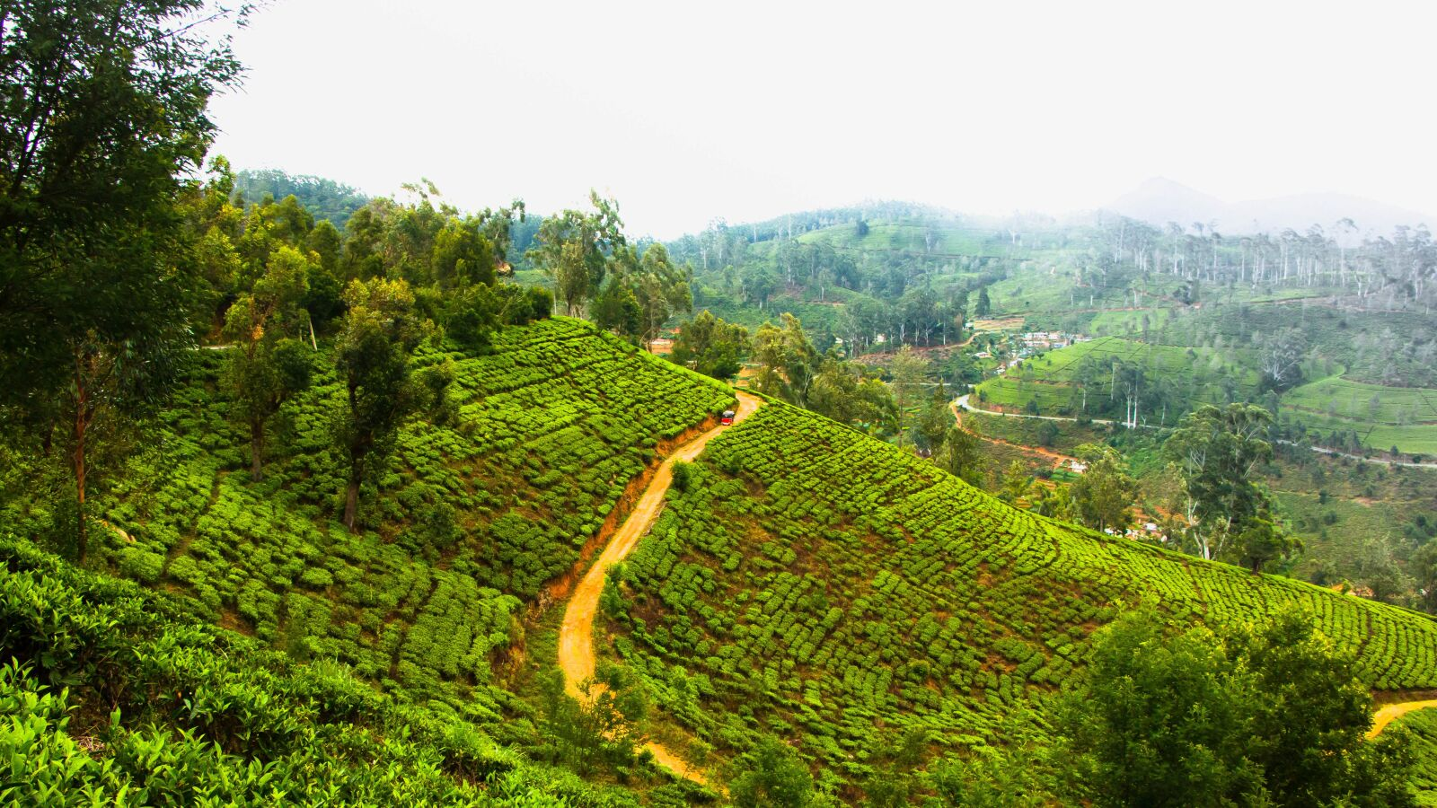 """Canon EOS 70D sample photo. """"Landscape, nuwara eliya, udupusellawa"""" photography"""