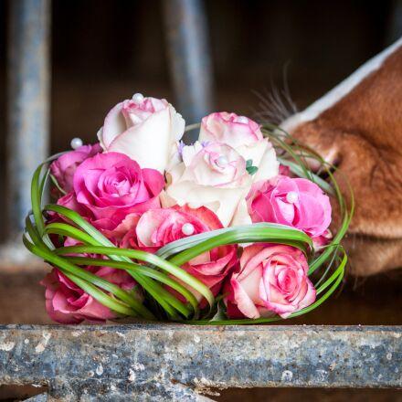 bridal bouquet, bouquet, wedding, Canon EOS 500D