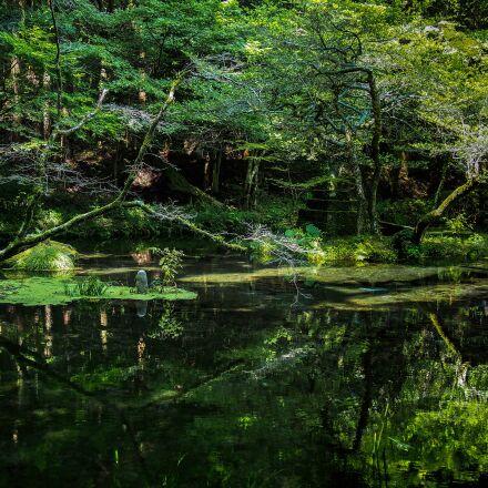 japan, water sources, ubuyama, Olympus E-M5