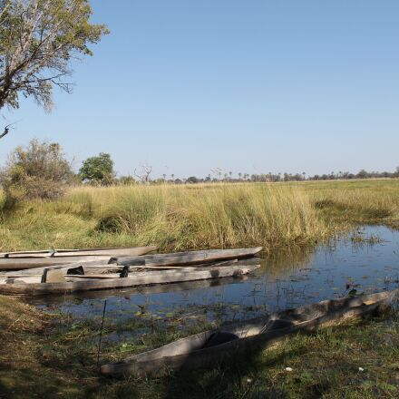 botswana, the okavango delta, Canon EOS 1100D