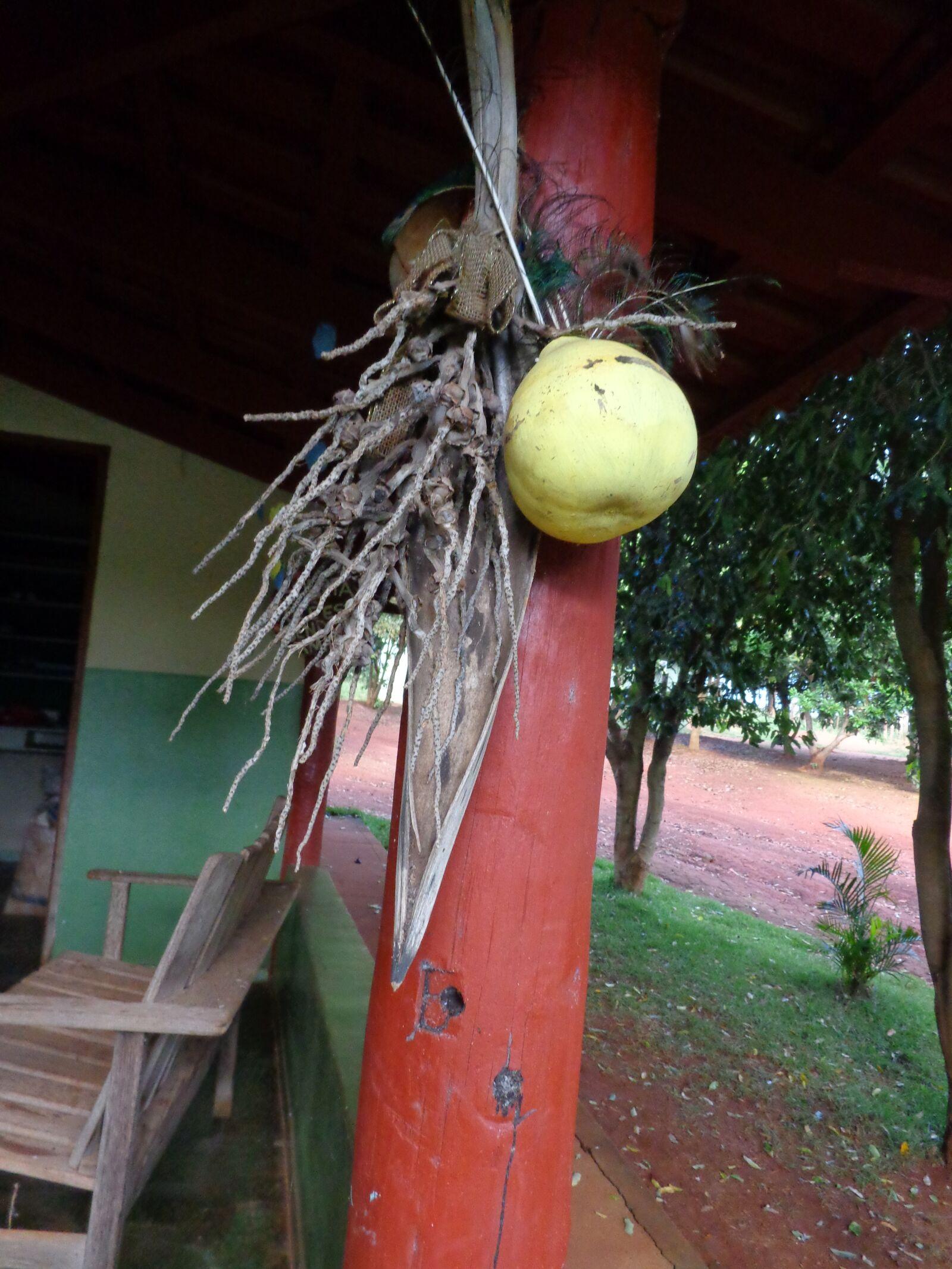 "Sony DSC-W690 sample photo. ""Crafts, gourd, preparation"" photography"