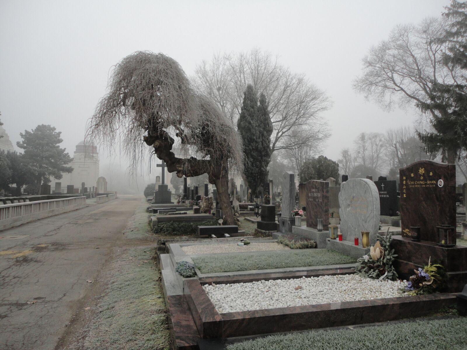 "Sony DSC-W350 sample photo. ""Central cemetery, cemetery, vienna"" photography"