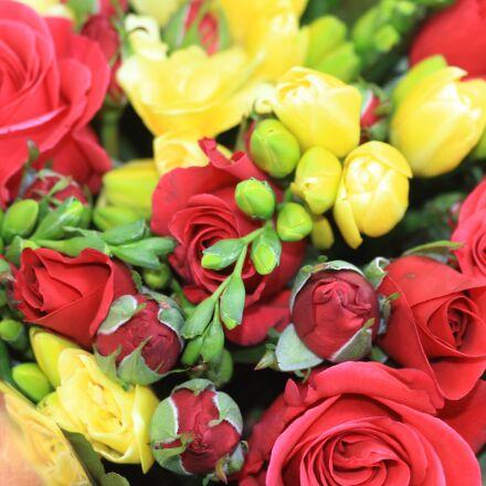 flowers, bouquet, spring, Canon EOS 600D
