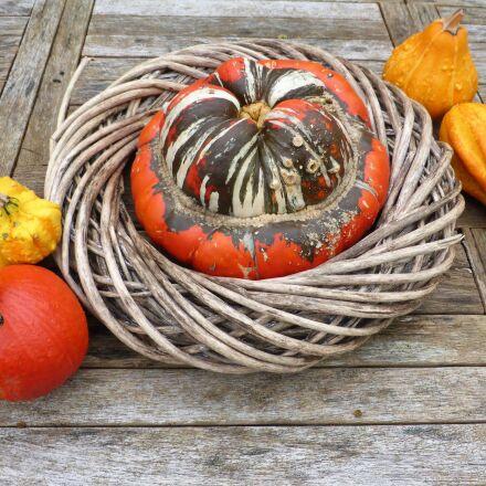 food, ornamental fruit, autumn, Panasonic DMC-TZ40