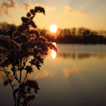 sunset, sun, evening, Canon POWERSHOT A1200