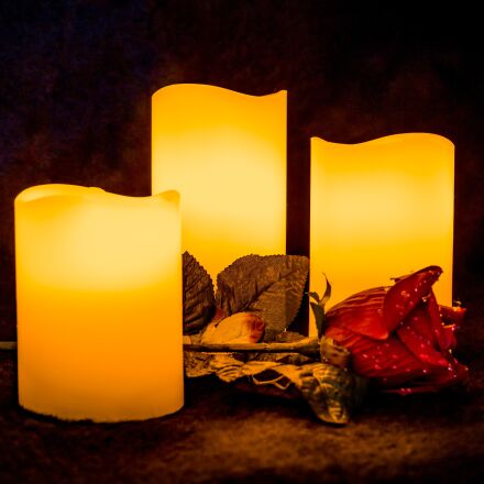 candle, light, rose, Canon EOS 6D