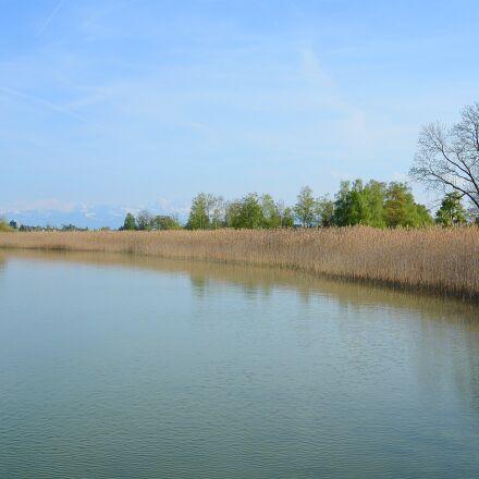 landscape, reed, bank, Nikon 1 S1