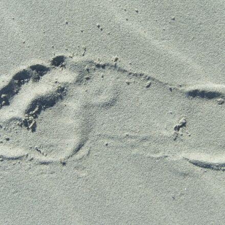 foot step, beach, print, Fujifilm FinePix F70EXR