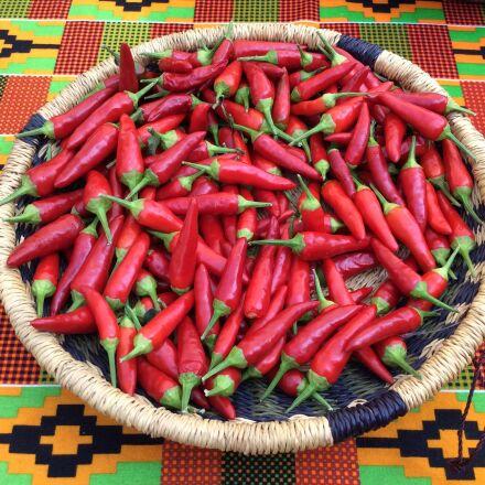 hot, peppers, basket, Apple iPad Air