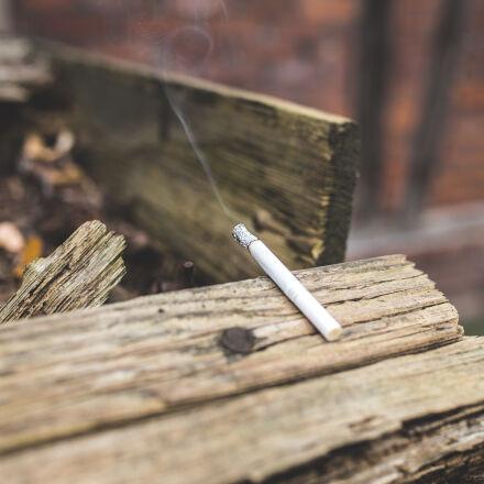 cigarette, close, up, log, Canon EOS 6D