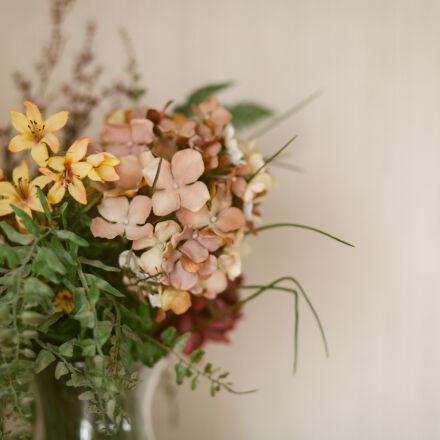 flowers, Canon EOS 5D MARK II