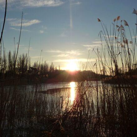 sunset, reeds, lake, Panasonic DMC-ZS1