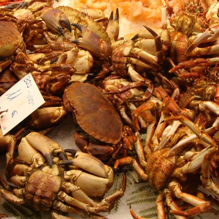 crabs, seafood, food, Sony DSC-T9