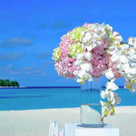 beach, bouquet, bright, chairs, Nikon D700