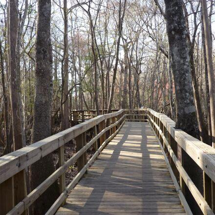 boardwalk, path, walkway, Panasonic DMC-FS3