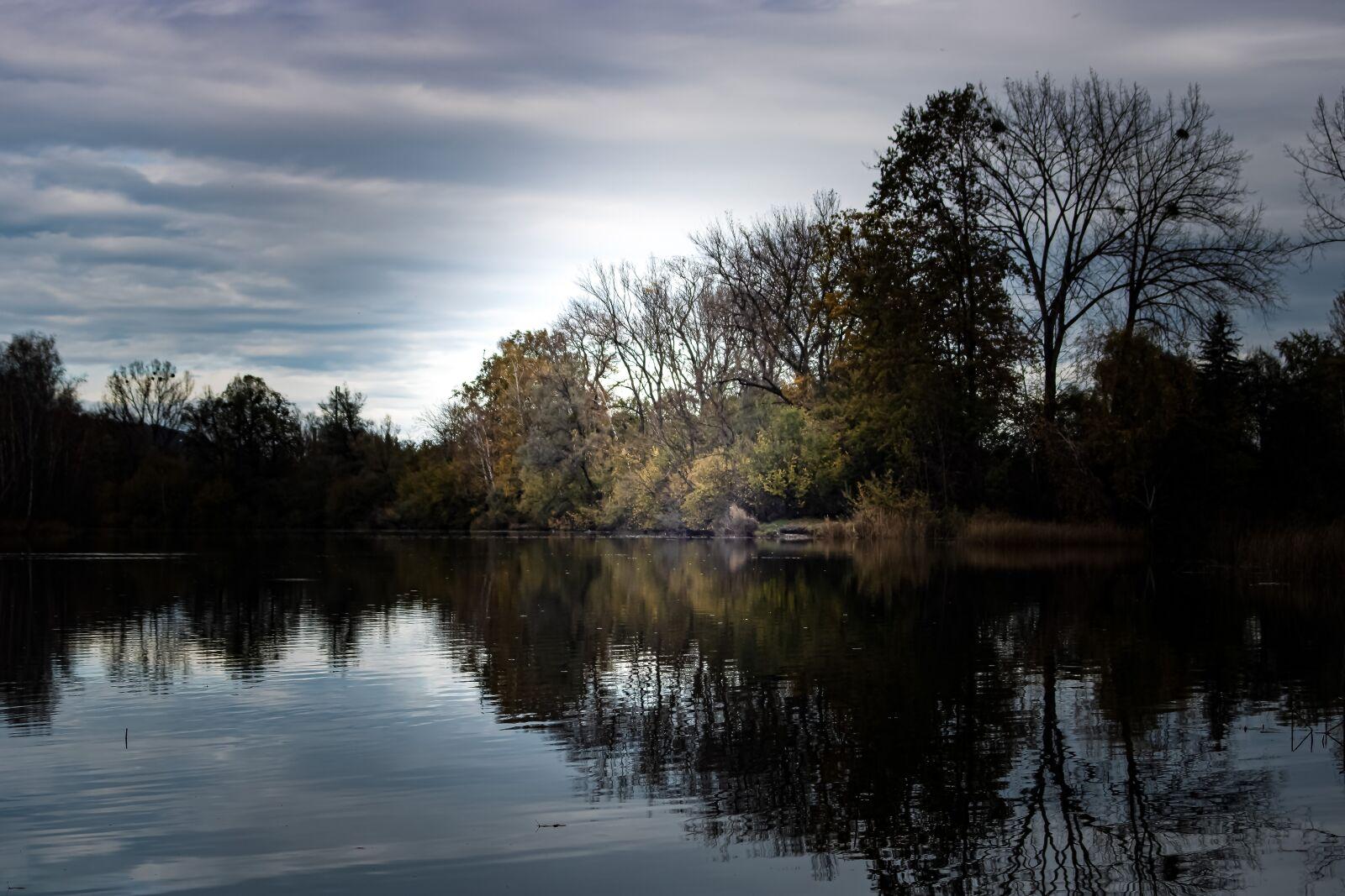 autumn landscape, landscape, outdoor