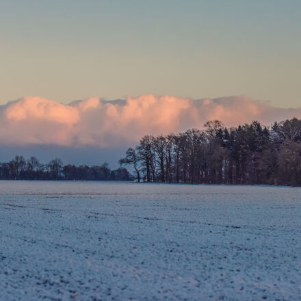 clouds, forest, nature, winter, Nikon D810