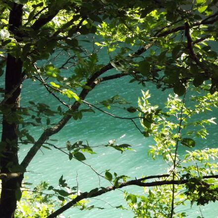 leaves, acorns, lake, Fujifilm FinePix S3200