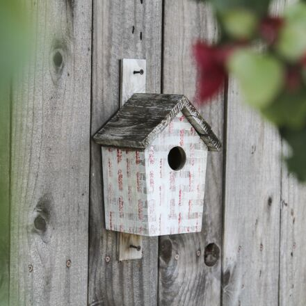 birdhouse, wood, wooden, Canon EOS REBEL T2I