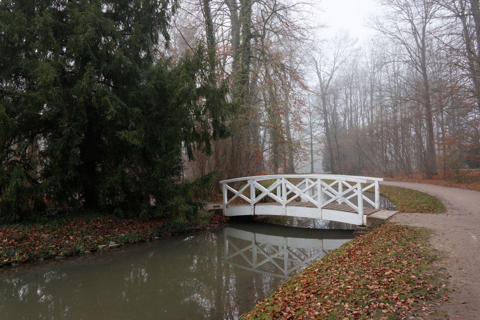 schlossgarten, schwetzingen, january