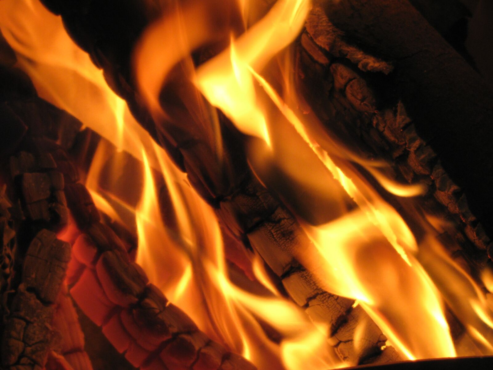 """Canon PowerShot SX110 IS sample photo. """"Fire, open fire, fireplace"""" photography"""