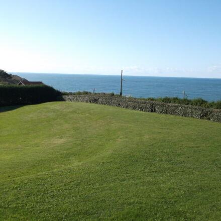 biarritz, france, freedom, grass, Fujifilm FinePix AX550
