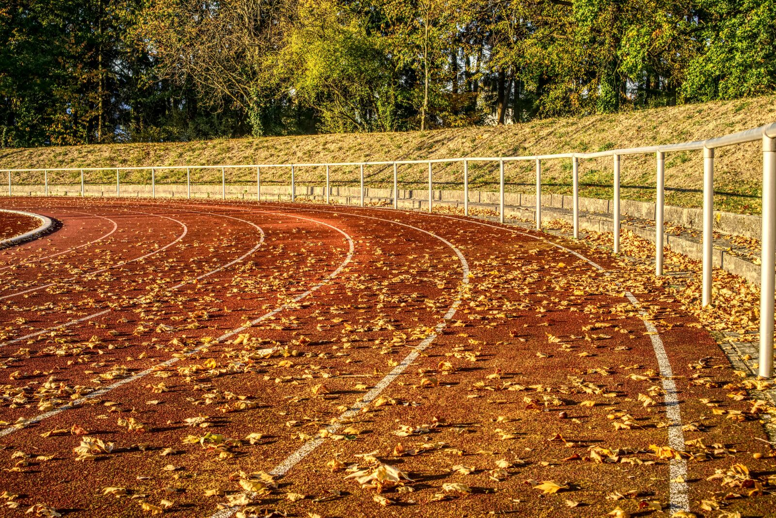 """Sony a6000 sample photo. """"Athletics, competition, sport"""" photography"""
