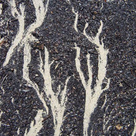 beach, sand, pattern, Sony DSC-P73