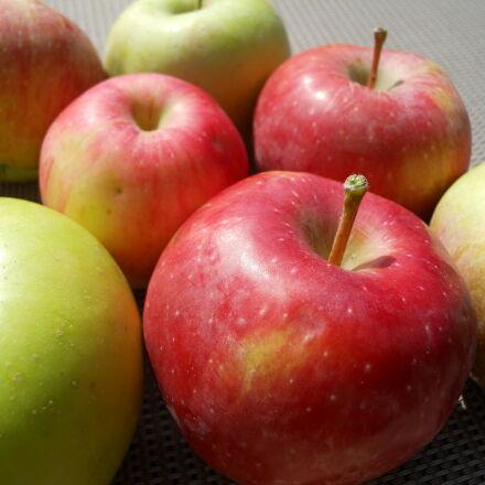 apples, fall, apples, Nikon COOLPIX S570
