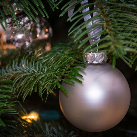 christmas, tree, theme, christmas, Nikon D7100
