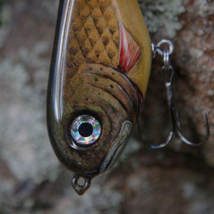 fishing, bait, pike, Canon EOS 5D MARK II