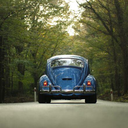 car, classic car, forest, Samsung NX3000