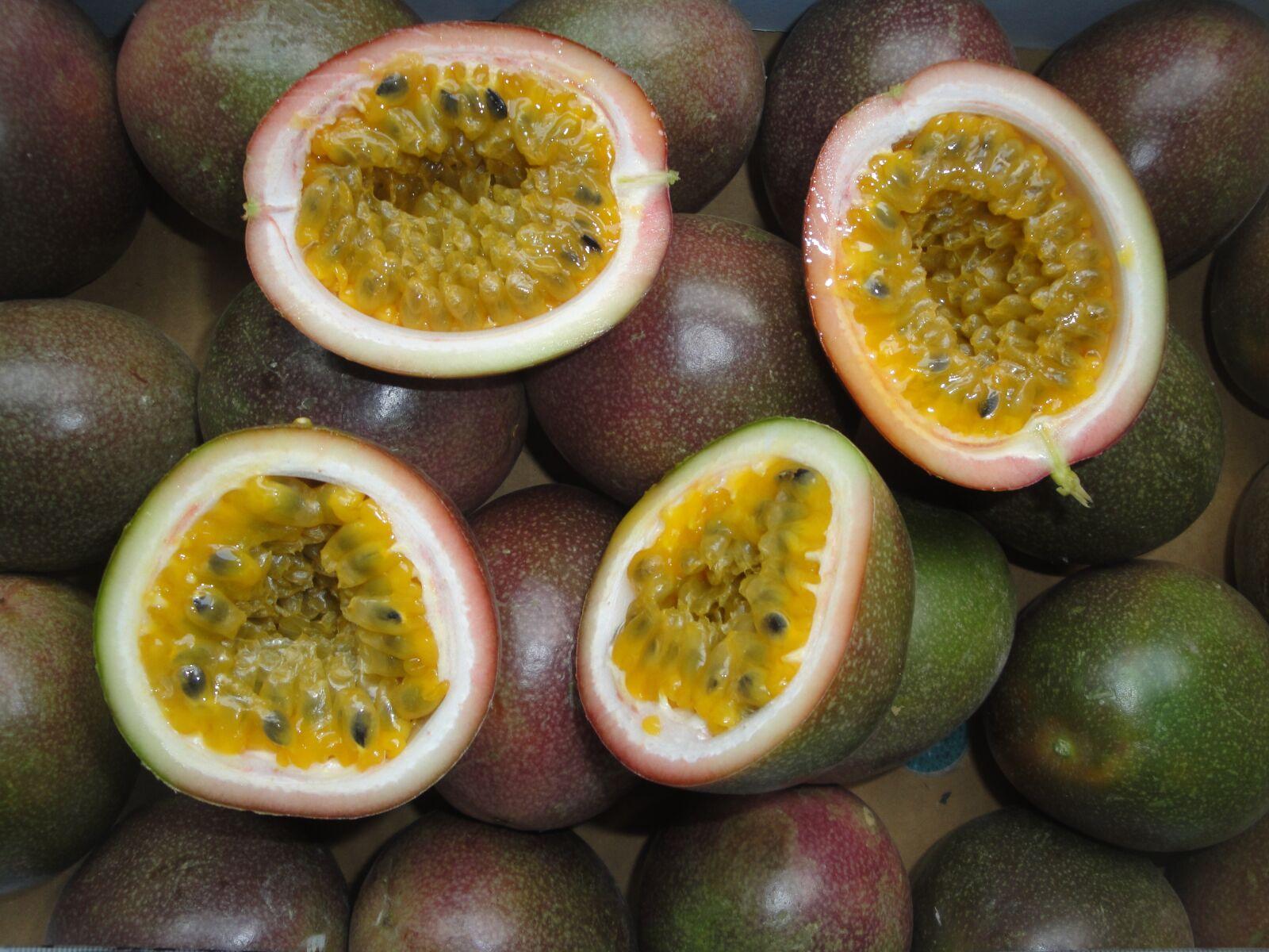 tropical, passion fruit, fruit