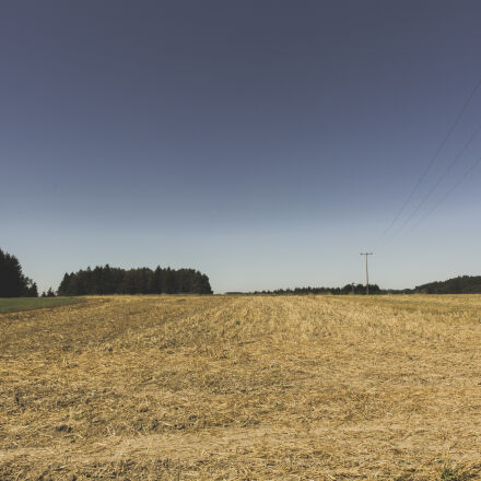 nature, sky, field, trees, Canon EOS 5D MARK III