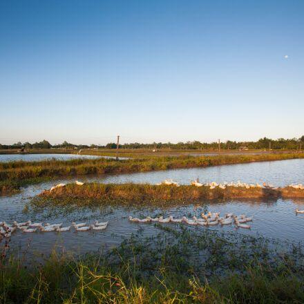 landscape, countryside, vietnam, Canon EOS 5D