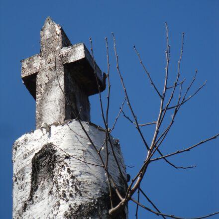 cross, birch, christianity, Sony DSC-W270