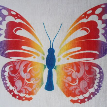 butterfly, colorful, color, Sony DSC-W510