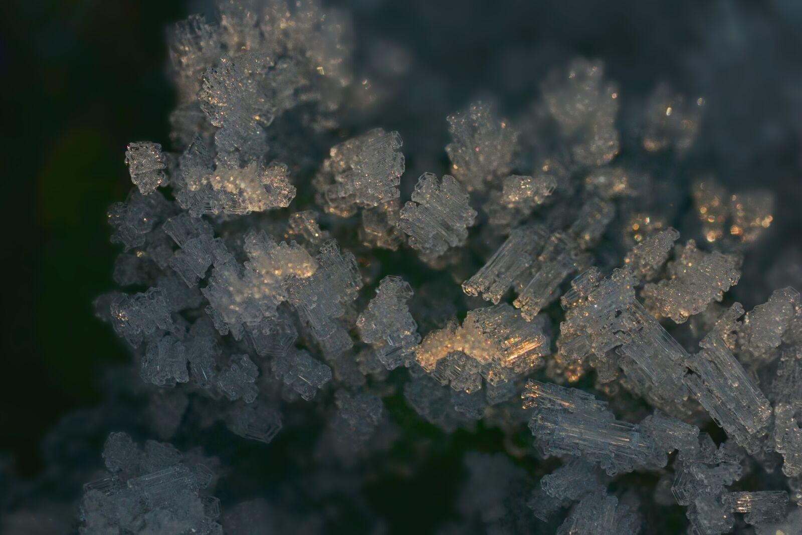 """Sony a6000 sample photo. """"Winter, nature, ice"""" photography"""