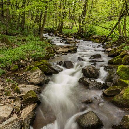 bach, water, river, Canon EOS 6D
