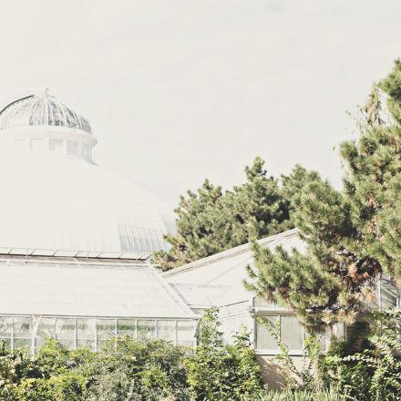 architecture, building, downtown, greenhouse, Nikon D300