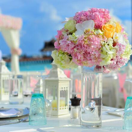 asad, atoll, biology, bouquet, Nikon D700