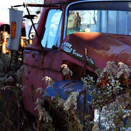 salvage yard, car, wreck, Canon EOS REBEL T3I