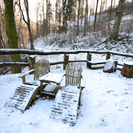 cold, forest, relax, snow, Nikon D3100