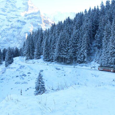 snow, winter, cold, Canon EOS 70D